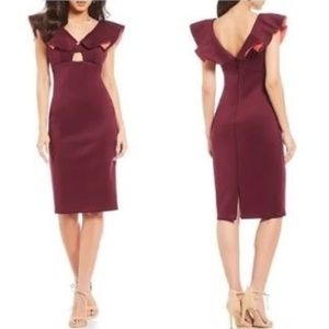 Gianni Bini Miranda Dress NWT Raisinrust Size 2